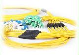 24 cavi di zona della fibra di distribuzione di memoria MP