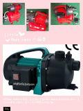 (SDP600-2S) Водяная помпа сада бочонка дождя с головкой нержавеющей стали