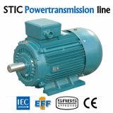 Motor elétrico mineral elevado do IEC Ye2 da eficiência
