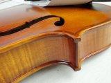 BV/SGS Bescheinigungs-Lieferant---Satin-gelbes Flamme-Ahornholz-feste gemäßigte Violine