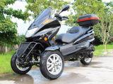 DOT/EPA는 기동성을 위로 서 있다 가스 150cc Trike 스쿠터를 승인했다