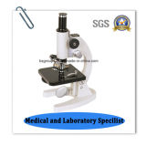 Microscopio biológico educativo económico Bz-100