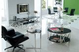 TVの立場/居間の家具/ステンレス鋼表/ホーム家具/現代表/ガラス表/緩和されたガラス表Dg006