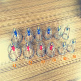 Populäres Cupping Hijama/Cupping/Chinese Cupping mit Competitive Price