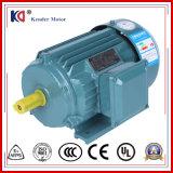 Dreiphaseninduktion elektrischer Wechselstrommotor mit Fabrik-Preis