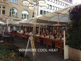 Calentador Radiante Eléctrico para la calle Food
