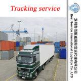 Logística Loading & Trucking Service em Shunde, Dongguan, Zhongshan, Shenzhen, Foshan