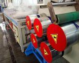 Máquina de la protuberancia de la correa del embalaje del animal doméstico de la calidad