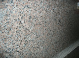 Mattonelle Polished della pietra del granito G563 della lastra del granito da vendere