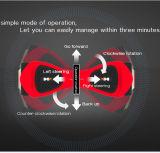 중국어는 전기 스쿠터를 균형을 잡아 2개의 바퀴 각자를 제조한다