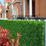Plastic artificiale Hedge Fence Boxwood Hedge per Decoration
