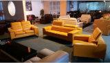 居間のソファーの家具のソファーの一定の工場現代ソファー
