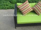 Insieme esterno del sofà del rattan di stile australiano