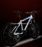 2015 New Fashion Cheap Direct Sale Bikes
