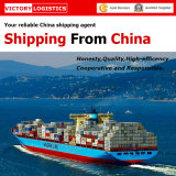 Mar Shipping/Logistics Shipping From China a Worldwide