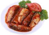 Venda quente de sardinha enlatada com 125g em molho de tomate