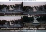 2008, фонтан нот в музее Китая Silk (отбрасывать-типе механически птицах, фонтане механически качания круглом)