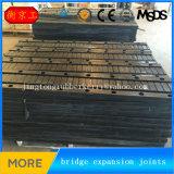 Joints de dilatation élastomères pour des ponts en route