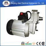 AC Single-Phase 115V 저가 고품질 기어 전동기