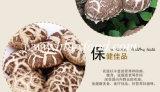 Новый высушенный гриб 2016