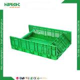 De plastic Kratten van de Bakken van de Omzet Plastic Vouwbare Plantaardige