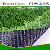 Искусственная трава для пусковой площадки любимчика домочадца