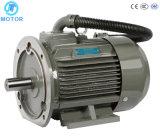 Eficiência elevada com Ce TUV para o motor elétrico dos compressores