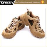 Esdy 사막 군 시동이 전술상 훈련 돌격에 의하여 구두를 신긴다