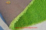 Animaux familiers jouant le tapis de regard normal d'herbe de Faux