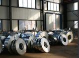 Chromed galvanizzato Steel Strip Coil per Construction