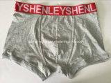 Boxer-Kurzschluss-Unterwäsche der festen neuen Art-Form-Männer