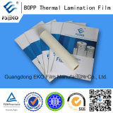 24mic 310mm * 200m * 1inch Pequeño rollo BOPP Themral Laminating Film