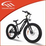 bicicleta elétrica gorda de 500W 48V
