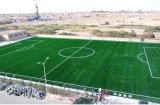 Synthetic Infilled Football Grass para Soccer Pitch