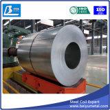 Tôle d'acier galvanisée de fer dans la bobine de Shandong