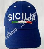 (LPM15092) Neue fördernde Baseball-Sport-Ära-Schutzkappe mit Stickerei