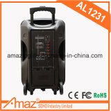 altoparlante portatile di 12inch Bluetooth da Guangzhou Temeisheng