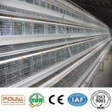 Клетка цыпленка курицы слоя с самыми лучшими качеством и умеренной ценой для сбывания