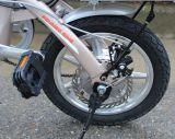 Faltendes elektrisches Fahrrad 14inch