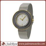 Heet verkoop Charme en het Dunne Horloge van het Roestvrij staal voor Dames