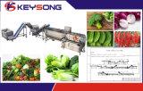 Linha vegetal desidratada da trasformação de frutos