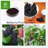 Extrato da fruta do Mulberry, extrato natural da fruta do Mulberry (anticianinas)
