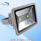 高いPower Bridgelux 200W LED Flood Lamp