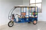 Bici pesada del cargo del triciclo del cargamento