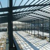 Gruppo di lavoro durevole prefabbricato della struttura d'acciaio con Nizza il disegno