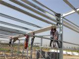 La volaille de service d'arrêt de la construction préfabriquée une renferment/fermes avicoles pour le grilleur