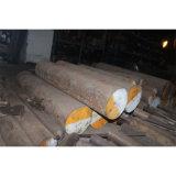 Barra rotonda d'acciaio della muffa di plastica Nak80/15ni3mn/Aisip21