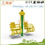 Напольное оборудование гимнастики для парка атракционов (MT/OP/GYM1)