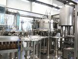 Bebidas da energia natural que enchem-se fazendo a planta com a tecnologia avançada