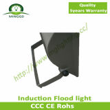 100W 110W 120W Induction Flood Light com 5 Years Warranty